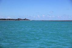 Pregopontocom Tudo: Grupo investiga a presença de espécies invasoras no litoral de Alagoas...