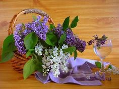 1qKLRSTuQUM1Sip65Nf0jC5o8IbIXnvBWsaaZuxO Flora Flowers, Flowers Nature, Purple Flowers, Pink Roses, Beautiful Flowers, Early Spring Flowers, Gladiolus Flower, Bouquet, Macro Flower