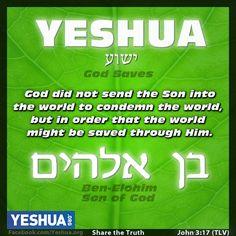 Yeshua, Ben Elohim