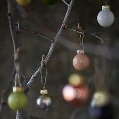 miniature bulb set 100