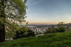 Waid, Zürich