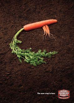 The Print Ad titled Calgary Farmers Market: Carrots was done by Wax advertising agency for Calgary Farmers Market in Canada. Artist Portfolio, Portfolio Design, Freelance Graphic Design, Advertising Design, Ad Design, Photo Manipulation, Farmers Market, Creative Director, Artsy Fartsy