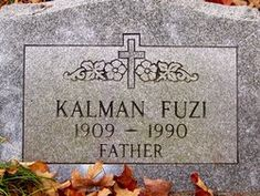 Kalman Fuzi