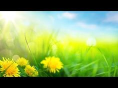 Calming Songs, Relaxing Music, Morning Music, Celtic Music, Music Heals, Mind Body Soul, Just Relax, Meditation Music, Wicca