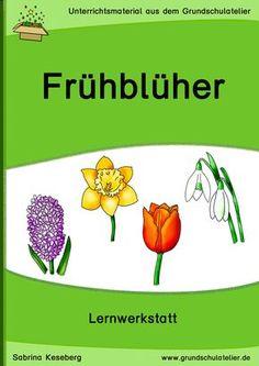6-Titel-Schneegloeckchen-KiGaPortal-Kindergarten-Vorschule ...