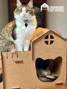 Adorable, durable, and eco-friendly -- what's not to love about our Kitty House? Our cardboard cat house offering is the exact hideaway your kitties need to get the cozy, private space they really want and deserve. #cardboardcathouse #cardboardcathomes #kittyhouse #cathouse #catcastle #cardboardcatscratcher #cardboardcattower #cardboardcattree #cathouseindoor #cathomeindoor #cathouseplans Cardboard Cat Scratcher, Cardboard Cat House, Happy Animals, Cute Animals, Cat House Plans, Cat Castle, Cat Activity, Cat Towers, Cute Baby Cats