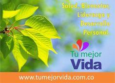 Liderazgo y Desarrollo Personal también hacen parte de tu BIENESTAR Herbs, Plants, Ideas, Better Life, Personal Development, Leadership, Wellness, Parts Of The Mass, Health