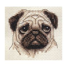 Fawn PUG DOG Puppy Full Counted Cross Stitch KIT ALL Materials | eBay