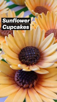 Sunflower Cupcakes, Gum Paste Flowers, Modeling Chocolate, Themed Cupcakes, Sugar Flowers, Autumn Theme, Dessert Table, Fondant, Cake Decorating