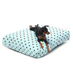 Polkadot Pet Bed Cover Blue Brn