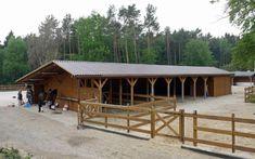 Aktivstall Trittau - ein naturnahes Herdenleben