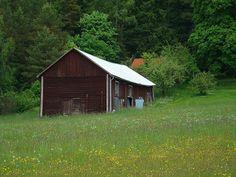 Zomer in midden Zweden