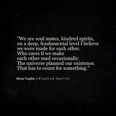we are soul mates, kindred spirits, on a deep, fundamental level I believe we were made for each other, the universe planned our existence, that has to count for something