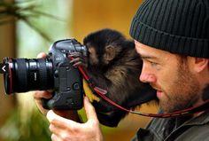 Couple of primates.