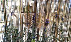 marinainblue from Jerez: Working outdoors with Fleur Paint - Trabajando al aire libre con Fleur Paint