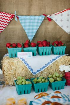 Hobby Lobby has these teal containers. Adorable Vintage County Fair Birthday Party Inspiration and Photos County Fair Birthday, Farm Birthday, Carnival Birthday, First Birthday Parties, Birthday Party Themes, Birthday Celebration, County Fair Theme, County Fair Decorations, Country Birthday Party
