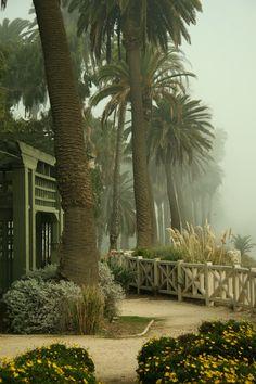 Palisades Park (Santa Monica, California)