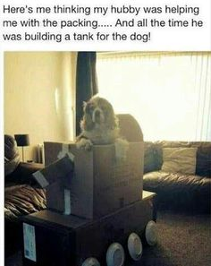 Actually, the husband inadvertently built the doghouse he'll be sleeping that evening ~