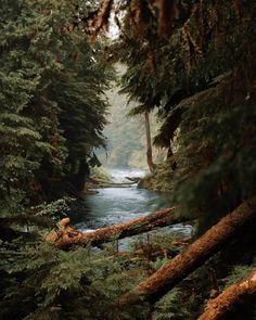 Landscape Photography, Nature Photography, Destinations, Belle Photo, Pacific Northwest, Amazing Nature, Nature Photos, Beautiful Landscapes, The Great Outdoors