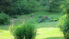 Garden Inspiration: Hudson Valley Cottage