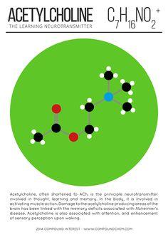 Acetylcholine ~ the Learning neurotransmitter
