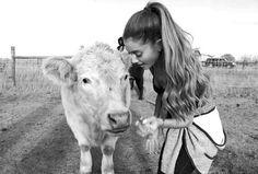 Ariana Grande Italia (@arigrande_ITA) | Twitter