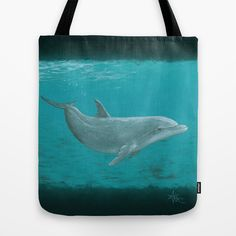 """""""Shallow Reef"""" Acrylic Painting Dolphin Art by Amber Marine 