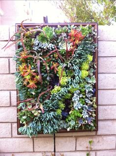 JM Succulents – Custom Outdoor Art for Your Home » ALL POSTS