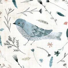 """좋아요 2,759개, 댓글 20개 - Instagram의 Katie Wilson(@inmybackyardnz)님: """"Blue bird!"""""""