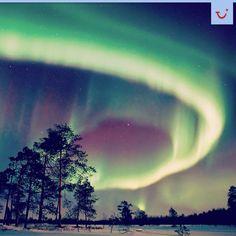 Suomi Northern Lights, Nature, Travel, Voyage, Aurora, Viajes, Traveling, Nordic Lights, Aurora Borealis