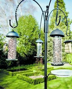 nourrir les oiseaux leur permet de passer l'hiver sans dommages