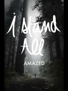 """""""I stand all amazed at the love Jesus http://facebook.com/173301249409767 offers me; … I marvel that he would descend from his throne divine to rescue a soul so rebellious and proud as mine; … Oh, it is wonderful that he should care for me enough to die for me! Oh, it is wonderful, wonderful to me!"""""""