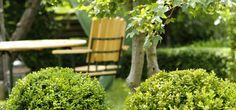 Garden design Outdoor Chairs, Outdoor Furniture, Outdoor Decor, Island Girl, Garden Design, Herbs, Garden Chairs, Herb, Landscape Designs