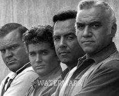 """The Cartwright family of the tv show """"Bonanza"""" Hollywood Actor, Golden Age Of Hollywood, Old Hollywood, Bonanza Tv Show, Pernell Roberts, Cinema, Tv Westerns, Old Movie Stars, Old Tv Shows"""