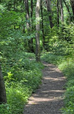 11 great places to go hiking in Lancaster County - LancasterOnline: Home