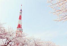 Cute Asian Fashion, Korean Fashion, Cute Japanese, Sugar And Spice, Beautiful Places, Scenery, Girly, Photoshoot, Wallpaper