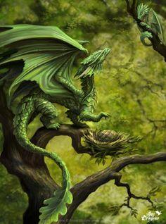 Ilustración de Anne Stokes. Madre dragón observa a sus crias como progresan mientras juegan entre las ramas y ella cuida su último huevo a falta de eclosionar. Más info sobre Anne Stokes y sus ilustraciones en el blog de puzzlemania.net