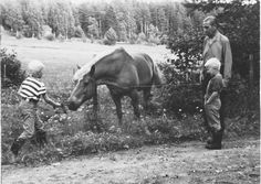 Finnish horse and boys . Old Pictures, Old Photos, History Of Finland, Scandinavian Countries, White Horses, My Land, Marimekko, Life Photo, Vintage Photography