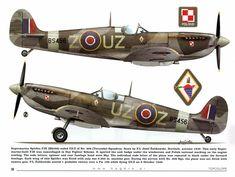 Spitfire IX No.306 Polish Sqn.RAF