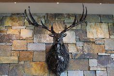 Pacific Metal Arts| Metal Sculpture| Seattle | Large Animal Mounts