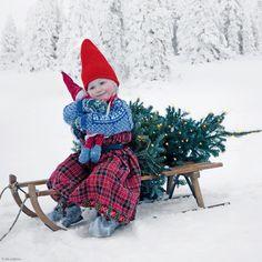 Wir wünschen schöne Weihnachtstage und ein glückliches neues Jahr Art.-Nr.: 209-003 Frohe Weihnachten | Foto: © Per Breiehagen/Getty Images