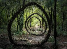 forest-land-art-nature by Spencer Byles. Art Environnemental, Art Et Nature, Forest Art, Deep Forest, Magical Forest, Beautiful Forest, Fairy Tale Forest, Wild Forest, Forest Garden