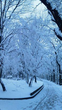 snow.... Love it