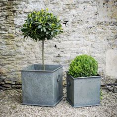 contemporary outdoor planter boxes pools planters garden rh pinterest com Above Ground Planters Plants to Use in a Box Planter