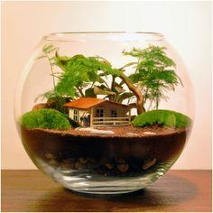 Mini Bahçe Teraryum Nasıl Yapılır