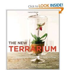 My next read!  The New Terrarium: Creating Beautiful Displays for Plants and Nature