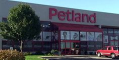 """Petland store exterior..In the largest-ever puppy mill investigation, HSUS investigators visited 21 Petland stores—in Florida, Indiana, Minnesota, Nevada, Ohio and elsewhere—and traced the origins of about 17,000 puppies shipped to the stores. They also visited many of Petland's breeders and suppliers. Our findings contradict assurances by staff at Petland stores and on Petland's corporate website that the company deals only with breeders who have """"the highest standards of pet care."""""""