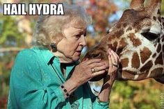 """Collection of the best """"Hail Hydra"""" memes"""