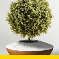 POETREE | a funeral urn that evolves over time as a companion through the stages of mourning. The ashes are placed in the urn and are covered with soil. Designed by: Margaux Ruyant of DSK ISD International School of Design (India)—IDEA 2011 Gold, Student