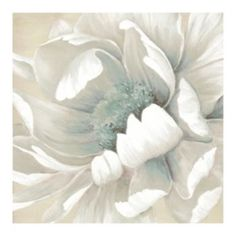 ''Winter Blossoms II'' Canvas Wall Art by Carol Robinson